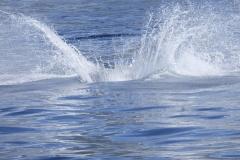 Plask-på-Stillehavet