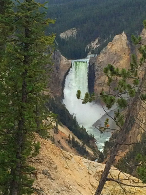 IMG_3932_b-Artist-Point-Lower-Falls-of-the-Yellowstone
