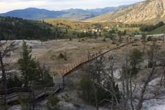 IMG_3706_b-Mammoth-Hot-Springs