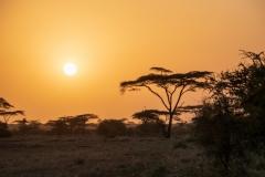 Etiopien, Awash-N.-P. Foto: Lise Peltola