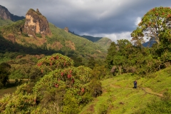 Etiopien. Bale Bjergene. Foto: Lise Peltola