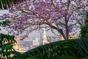 Billeder fra Madagascar